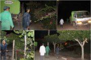 تواصل جماعة زايو حملات مكافحة الحشرات والبعوض والنواقل الضارة + صور