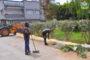 بالصور .. تنظيف وتهيئة الحديقة الموجودة بشارع فلسطين - حي بام - بزايو