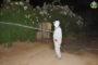 """جماعة زايو تواصل حملات رش المبيدات للقضاء على الحشرات الضارة """" البعوض والناموس"""""""