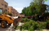 تدخل عمال مصلحة النظافة لإزالة شجرة من الشارع سقطت بسبب الرياح
