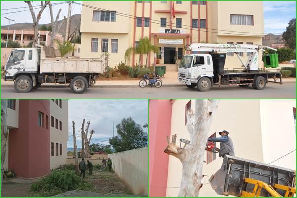 مصلحة النظافة والأغراس تقوم بعملية تقليم الأشجار المتواجدة بمؤسسة دار البر للطالبات