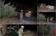 المجلس الجماعي لزايو يشن حملات مكثفة لمحاربة انتشار البعوض و الحشرات الطائرة + صور